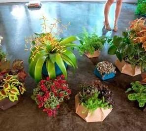 Catalog gardening | Dirt Du Jour | Annie Haven | Haven Brand | Scoop.it