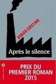 Après le silence, Didier Castino | Littérature -   Actualités - bouquinerie | Scoop.it