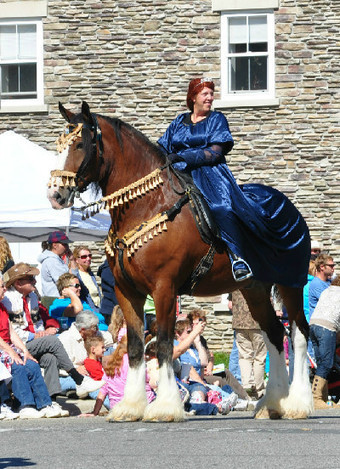 Eight Reasons to Go to Your Local Horse Festival | Horse Sense | Scoop.it