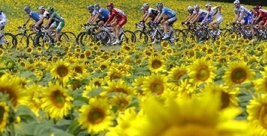 Le tour de France et les paysages de France | Remue-méninges FLE | Scoop.it