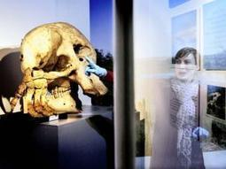 Sahara exhibition takes you back in time - Independent Online   Museums and Exhibitions   Scoop.it