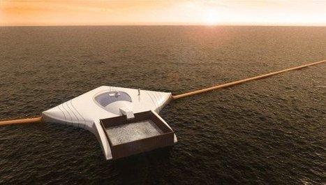 Incroyable : à 17 ans, il crée un nettoyeur d'océan écologique, durable et autosuffisant   Ecoloisirs   Scoop.it