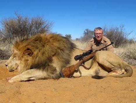 Zambia lifts big cat hunting ban - Africa Geographic   AP Human Geography   Scoop.it