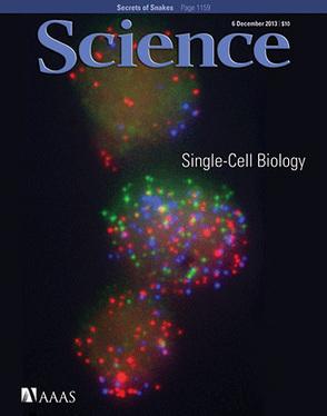 Un estudio publicado en 'Science' pone en evidencia a Google cuando mide el impacto de publicaciones científicas | Immunology Mosaic | Scoop.it