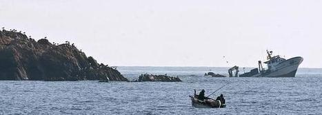 Alerta por el escape de combustible de un pesquero hundido en Gerona | Los sistemas fluidos externos y su dinámica. | Scoop.it