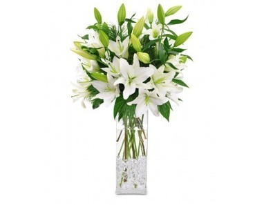 White Lillies Vase | 12 Red Roses N 2kg Fruit Basket | Scoop.it