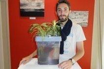 Citizen Farm. Petit poisson deviendra grand avec son aquarium-potager | Habitation autonome | Scoop.it