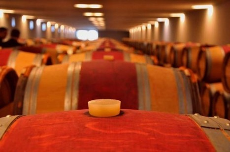 Bordeaux 2015: 'flashes of brilliance' says Martin | Wines of Bordeaux and south-west France | Scoop.it