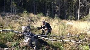 Det var en gang en skog | Liv & Røre | Scoop.it