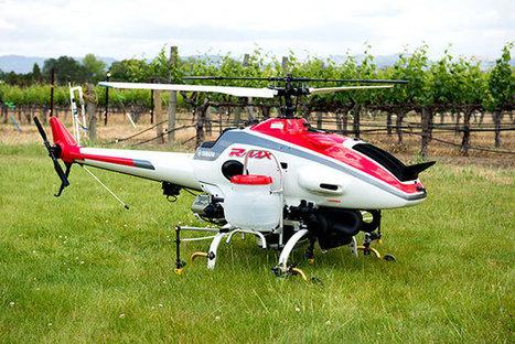 Un drone dans les vignes de la Napa Valley - Humanoides.fr   Le vin quotidien   Scoop.it