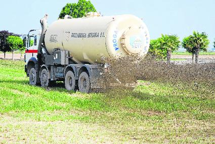 Els plans per evitar la contaminació per purins 'oculten' abocaments excessius | #territori | Scoop.it