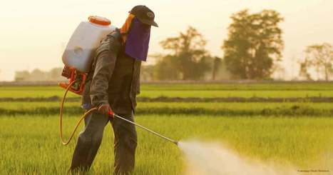India Insecticides Market |India Fungicides Industry |Pest Control India Market | Healthcare Market Research Reports | Scoop.it