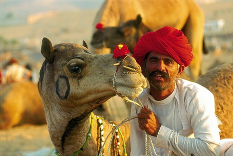 Golden Triangle Tour Packages   Indian Golden Triangle   Scoop.it