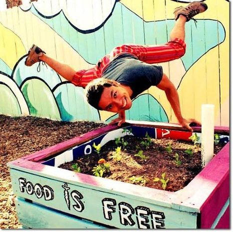 The Food Is Free Project | Sustainable Futures | Scoop.it