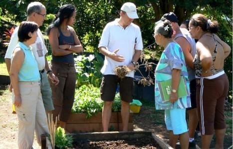 Jardiner et manger bio à TAHITI c'est possible. | Pacific Mirror | Scoop.it