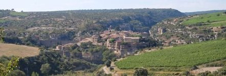 French Wine Regions - Minervois in Languedoc Roussillon | European Travel and Tourism | Scoop.it