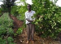 Blind farmer leads agriculture revolution in Meru | Future of agriculture knowledge resource centres | Scoop.it