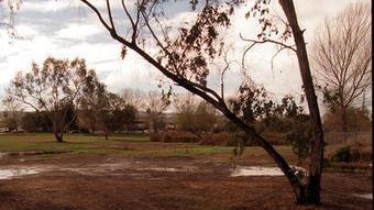 Torrance closes Madrona Marsh amid West Nile virus concerns - Los Angeles Times | Medicoav | Scoop.it