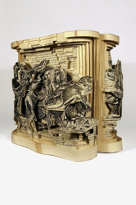 Insane art formed by carving books with surgical tools | Weird and wonderful | Scoop.it