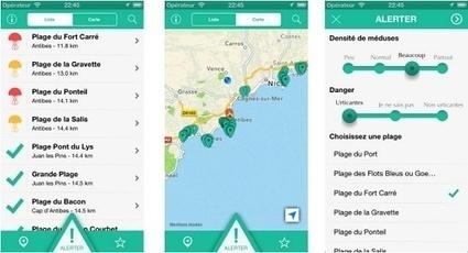 Méduses : une appli iPhone pour éviter les mauvaises surprises | Agents de voyages : ça bouge ! | Scoop.it