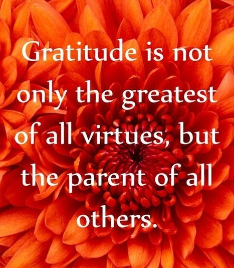 Gratitude | Quote for Thought | Scoop.it