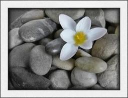 Zen-ification of a PowerPoint Presentation – Digital Journeys | PowerPoint Remixed | Scoop.it