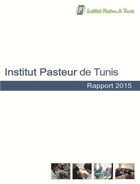 Mise en ligne du rapport d'activité 2015 de l'Institut Pasteur de Tunis | Institut Pasteur de Tunis-معهد باستور تونس | Scoop.it