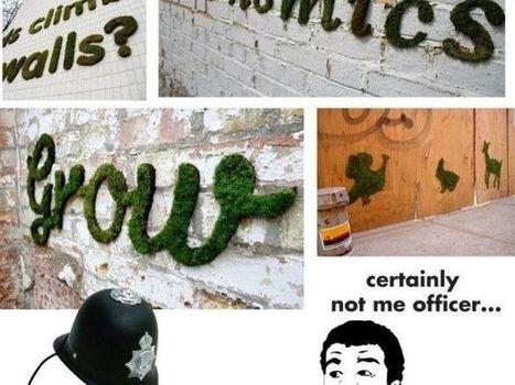 ¿Cómo hacer graffiti de musgo?   artes   Scoop.it
