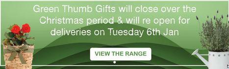 Green Thumb Gifts | Plants Online | Scoop.it