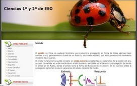 Docente 2punto0 | The Ischool library learningland | Scoop.it
