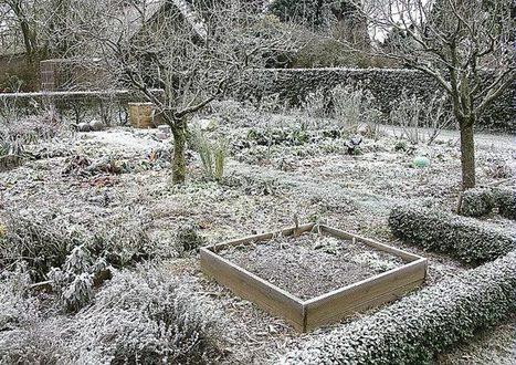 Que faire au jardin cet hiver ?   Le jardin par Maison Blog   Scoop.it