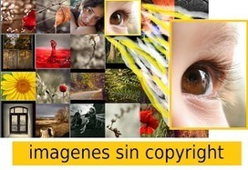 Buscadores de imágenes sin copyright | Aprendiendo a Distancia | Scoop.it