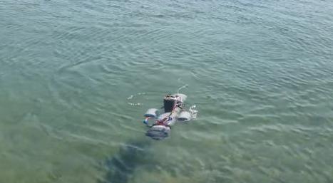 Submersible Raspberry Pi drone - Raspberry Pi | GarryRogers Biosphere News | Scoop.it
