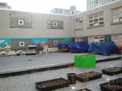 A NYC School Teams Up with Columbia to Build a Rooftop Garden and Classroom | Vertical Farm - Food Factory | Scoop.it