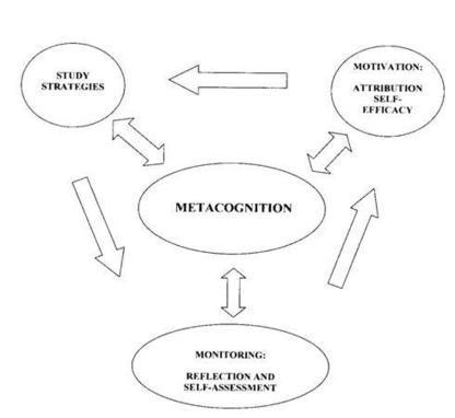 Teaching High School Psychology: AP Review, Self-Diagnostics, and Metacognition | Metacognition | Scoop.it