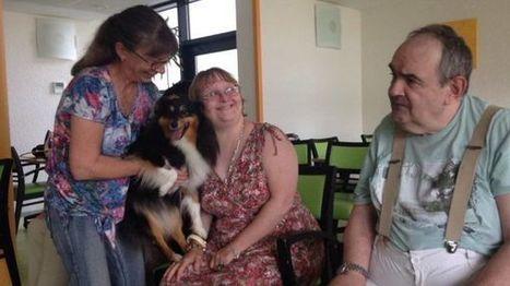 Journée internationale du chien : quand l'animal redonne le sourire aux personnes dépendantes | Alsace Actu | Scoop.it