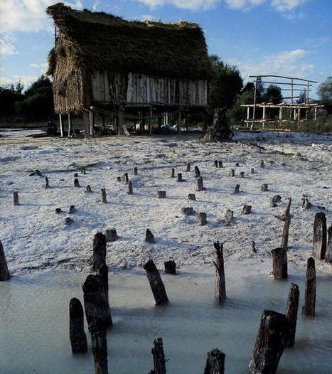 Sites palafittiques préhistoriques autour des Alpes - UNESCO World Heritage Centre | Mégalithismes | Scoop.it