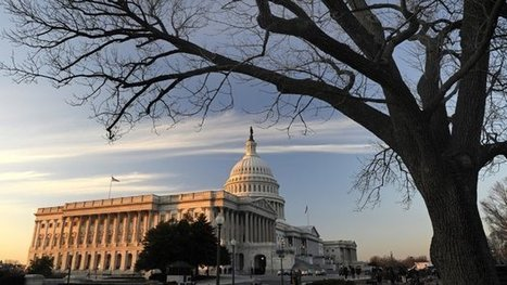 """Members Of Congress Declare """"Immunity"""" From Insider Trading Probe 