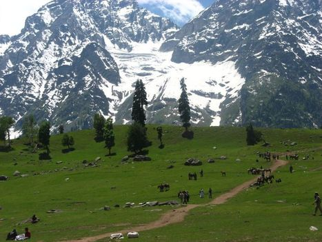 This Vacations Take a Trip to Kashmir Valley | Things to do in India | Scoop.it