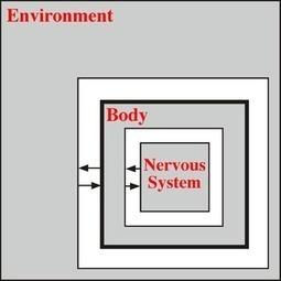Computational neuroethology - Scholarpedia   Human Health   Scoop.it