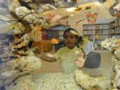 Children's Library Discovery Center: Queens' youngest readers find science in the stacks | SocialLibrary | Scoop.it