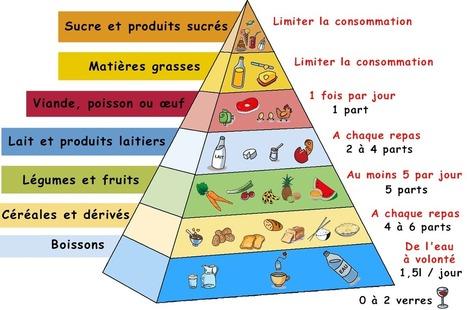 La pyramide alimentaire | Régime alimentaire | Scoop.it