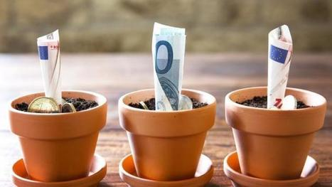 Livrets et assurance-vie captent la moitié de l'épargne des ménages | JP-Les infos | Scoop.it