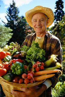 Dietas Balanceadas Antienvelhecimento | envelhecimento saudável | Scoop.it