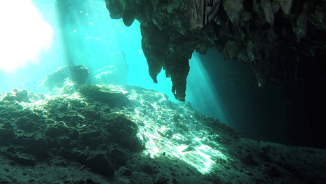 Exploring Mystical Underwater Caves   spéléo   Scoop.it