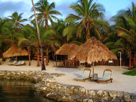 23 Acre Eco Resort – NGO Avain Sanctuary Located in San Ignacio ... | A Belize Real Estate Scoop | Scoop.it