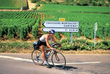Rota dos Vinhos na França | Dicas de viagem Paris | Scoop.it