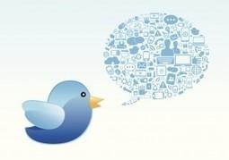 Twitter, l'outil incontournable de la recherche d'emploi ? | Jobdoc | Scoop.it