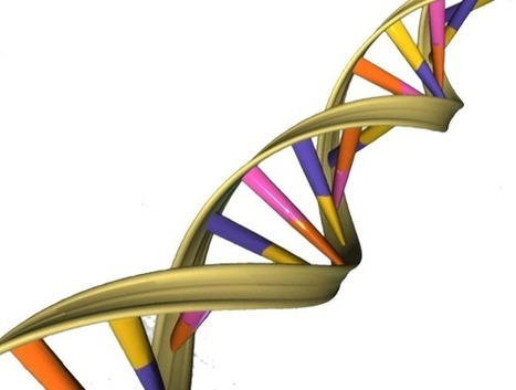 Researchers discover that DNA naturally fluoresces | Fragments of Science | Scoop.it