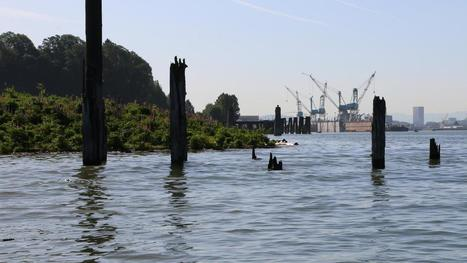 The EPA responds to criticism of its Superfund cleanup plan - Portland Business Journal | Sediment Investigation & Remediation | Scoop.it